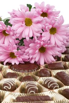 Set Of Chocolate And Chrysanthemum Flowers Royalty Free Stock Photography