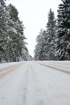 Free Snowy Country Road Stock Photo - 13561630
