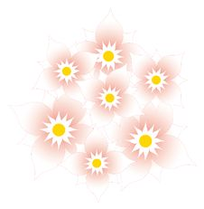 Free Pink Wild Flower Royalty Free Stock Photography - 13562847