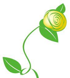Free Yellow Flower Royalty Free Stock Photo - 13564655