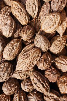 Free Walnuts Stock Photos - 13565453
