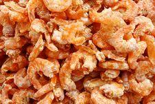 Free Shrimps Stock Photography - 13565902