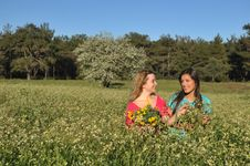 Free Two Beautiful Young Women Standing In Meadow Stock Photo - 13567100