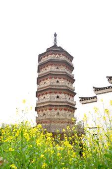 Free Pagoda Royalty Free Stock Photo - 13567225