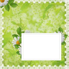 Card For Invitation Or Congratulation With Flowers Royalty Free Stock Images