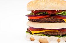 Free Hamburger Isolated Royalty Free Stock Images - 13568649