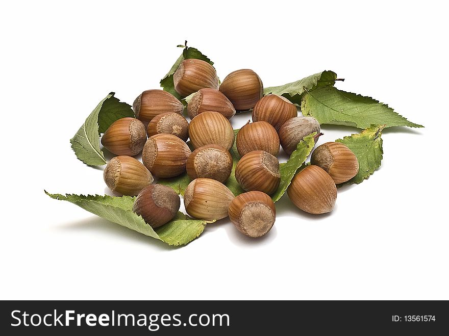 Some hazelnuts with leaves.