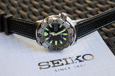 Free Watch, Watch Accessory, Strap, Watch Strap Stock Image - 135689911