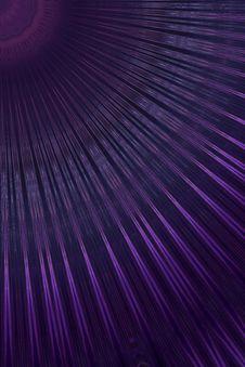 Free Purple, Violet, Line, Sky Royalty Free Stock Photos - 135690208