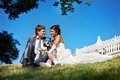 Free Happy Bride And Groom In Park Royalty Free Stock Image - 13578476
