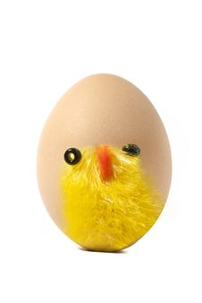 Free Chick On Egg Royalty Free Stock Photos - 13571438