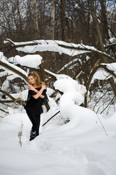 Free Fashion Model  In Winter Wood Royalty Free Stock Images - 13573699