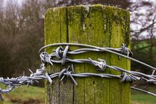 Free Barbed Wire Royalty Free Stock Image - 13574976