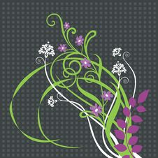Free Beautiful Floral Ornament Royalty Free Stock Photography - 13575957