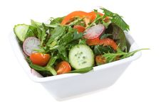 Free Healthy Vegetable Salad Stock Images - 13579084
