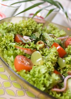 Free Healthy Green Salad Stock Photos - 13579483
