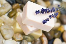Free Natural Soaps Royalty Free Stock Image - 13579526