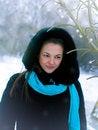 Free Winter Royalty Free Stock Photos - 13580638