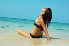 Free Beautiful Women  On The Beach Royalty Free Stock Image - 13580606
