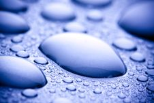 Free Water Drops Closeup Royalty Free Stock Photo - 13581275