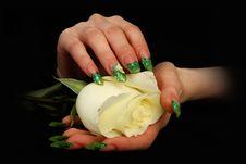 Free Nails Royalty Free Stock Photos - 13581888