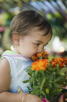 Young Girl Smelling Marigold Flowers Stock Photography