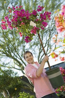 Free Man Holding Small Flowering Tree In Pot Royalty Free Stock Photos - 13585128