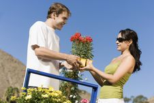 Free Young Couple Choosing Potted Flowers Stock Photos - 13585133