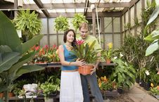 Free Young Couple Looking At Exotic Potted Plant Royalty Free Stock Photos - 13585138