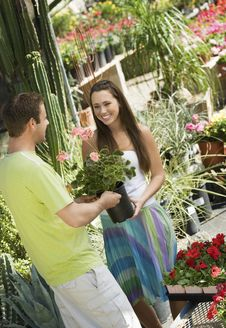 Free Young Couple Choosing Potted Flowers Royalty Free Stock Images - 13585139