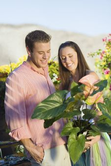 Free Young Couple Choosing Potted Flowers Stock Photography - 13585142