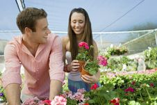 Free Young Couple Choosing Potted Flowers Royalty Free Stock Photography - 13585157