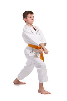 Free Little Boy Practice Karate Royalty Free Stock Images - 13588729