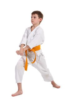 Little Boy Practice Karate Royalty Free Stock Image