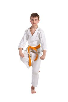 Free Little Boy Practice Karate Stock Images - 13589494