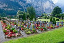 Free Cemetery, Botanical Garden, Garden, Plant Stock Photo - 135806320