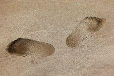 Free Sand, Fauna, Footprint, Organism Royalty Free Stock Photos - 135806618