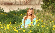 Beautiful Young Woman Sitting In Meadow Royalty Free Stock Images