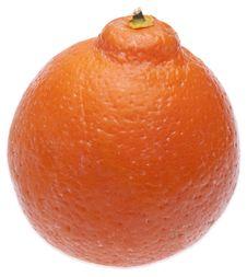 Free Orange Royalty Free Stock Images - 13591739