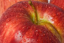 Free Red Apple Royalty Free Stock Photos - 13591918