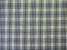 Free Green Checked Fabric Royalty Free Stock Images - 13592649