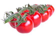 Free Fresh Cherry Tomatoes Stock Photos - 13592683