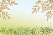 Free Spring Stock Image - 13593391