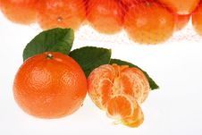Tangerines Packed Stock Images