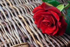 Red Rose On Wicker Background (copy Space) Royalty Free Stock Images