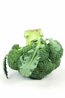 Free Ripe Broccoli Cabbage Royalty Free Stock Photo - 13594875
