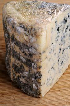 Moldy Cheese Isolated Royalty Free Stock Photo