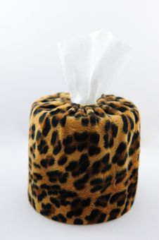 Free Leopard S Skin Tissue Box Stock Photography - 13597282