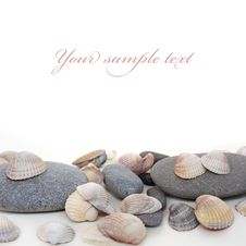 Free Cockle-shell With Pebble On White Background Royalty Free Stock Image - 13597616