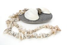 Free Beautiful Handmade Shell S Necklace Royalty Free Stock Image - 13597626
